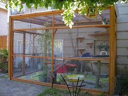 catio cat enclosure sanctuary bandit catio spaces