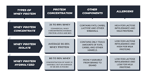 Whey Protein Chart Ultimate Whey Protein Guide For Beginners Nutrabay Com