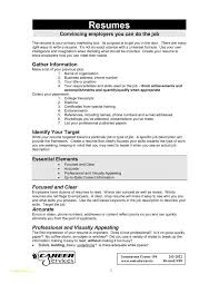 Resume Format For It Professionals Or Job Resume Examples And