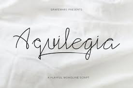 Something wild is a gorgeous, playful handwritten font created by the medialab team. Aquilegia Font By Grafemars Creative Fabrica In 2020 Social Media Calendar Handwritten Fonts Premium Fonts