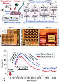 cmos biosensors for in vitro diagnosis transducing mechanisms image file c6lc01002d f10 tif