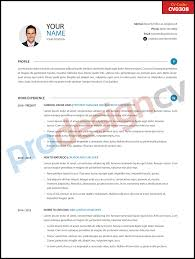 Professional Cv Cv0308 Prodesigncv