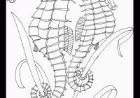 Free Printable Ocean Coloring Pages For Kids For Ocean Coloring