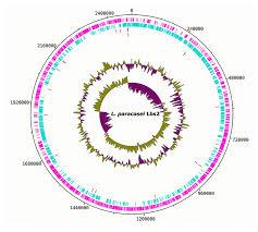 Microorganisms Free Full Text Reanalysis Of