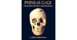 phineas gage before the accident. phineas gage: a gruesome but true story about brain science by john fleischman gage before the accident