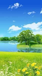 Full Screen Mobile Wallpaper Hd Nature ...