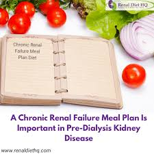 Dialysis Patient Diet Chart A Chronic Renal Failure Meal Plan Is Important In Pre