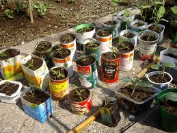 Vertical Container Vegetable Gardening Ideas  Home InspirationsContainer Garden Ideas Vegetables
