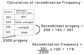 Gene Mapping Problems Chapter05
