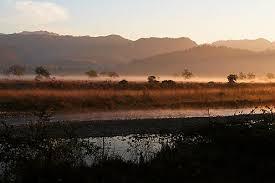 landscapes of corbett a photo essay travel photography  landscape of corbett national park