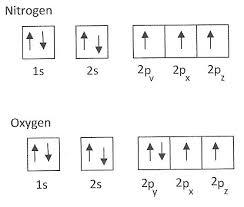 1s 2s 2p Chart Electronic Orbitals Chemistry Libretexts