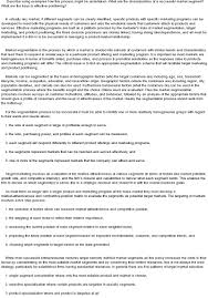 market segmentation essay segmentation targeting and positioning strategies essay