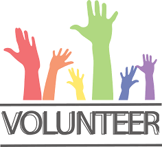 Image result for volunteering image