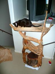 photo of a homemade rustic cat tree made with wood