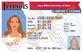 Psd State usa Illinois Drivers photoshop Is License This xqUTYOzx