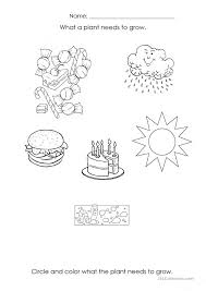 What Plants Need To Grow Worksheet Free Worksheets Library ...