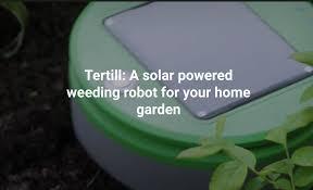 tertill is a solar powered weeding robot for home gardens