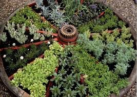growing a vertical vegetable garden