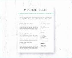 Buy Resume Templates Mesmerizing Buy Resume Templates Unique Personal Easy Resume Template Visit To