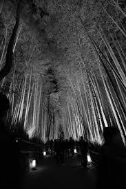 源氏物語ゆかりの嵯峨嵐山が幽玄の世界に 京都嵐山花灯路2011