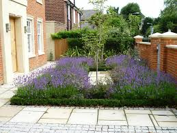 Small Picture front garden Caroline Crawford Garden Design SW London London