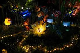 local artists illuminate lake merritt
