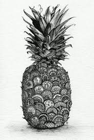 realistic pineapple drawing. realistic drawings that will have you raving over the details - bored art pineapple drawing r