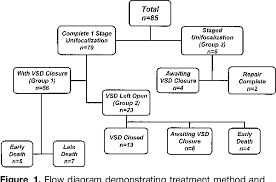 Pathophysiology Of Ventricular Septal Defect In Flow Chart Figure 1 From Early And Intermediate Outcomes After Repair