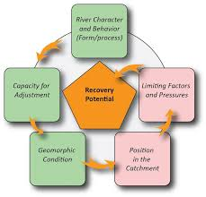 Flow Chart Styles Flow Chart Showing Factors Influencing Recovery Potential Of