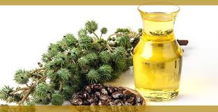 top 10 benefits of castor oil and
