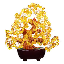 top 9 best feng shui money tree and luck in 2017