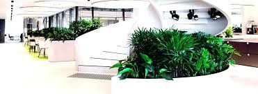 office planter. Office Plant Planter Boxes Sydney