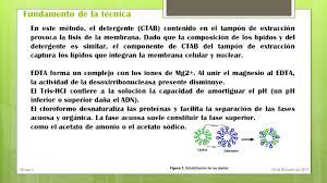 Metodos De Obtencion De Los Colorantes Azoicoslll