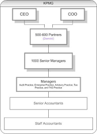 Kpmg Organizational Structure Chart The Business Insider