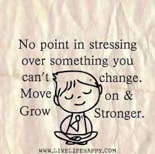 Life Stress Quotes Adorable Life Stress Quotes Ryancowan Quotes