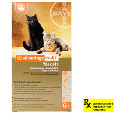 Advantage Dosage Chart For Cats Advantage Multi Cat Heartworm Fleas Worms Lambert Vet Supply