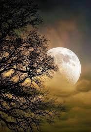 Paysage de pleine lune