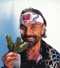 Cannabis Quote Of The Day: Tommy Chong | Marijuana and Cannabis ... via Relatably.com