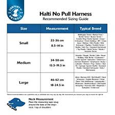 The Company Of Animals Halti No Pull Harness