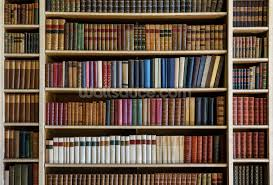 Old Books Bookcase Wall Mural Photo Wallpaper