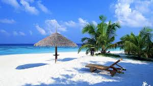 desktop backgrounds beach theme. Beach With Palms And Lounger Intended Desktop Backgrounds Theme Lifewire