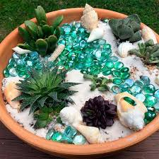how about this stunning under the sea diy succulent garden this miniature succulent