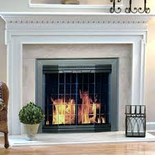 fireplace spark screen fireplace glass screens with doors place fireplace glass doors with spark screen fireplace fireplace spark screen