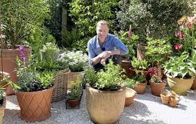 best plants for pots