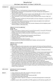 Team Leader Resume Examples Project Team Leader Resume Samples Velvet Jobs