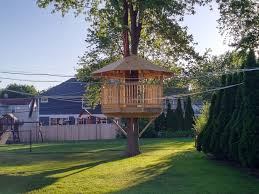 Image Homemade Peter Diy Buildernbspused Our Lightduty Marblemount Plans To Nelson Treehouse New Treehouse Plans For Diyers Build Your Own Treehouse This