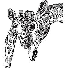Adult Coloring Book Giraffe Sketch Coloring Page Painting