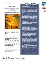 Company Fact Sheet Sample Company Fact Sheet Template Microsoft Free Information Getpicks Co