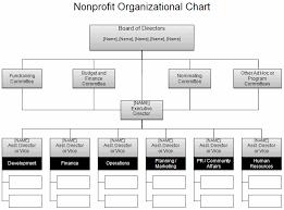 4 5 Non Profit Organization Chart Sop Examples