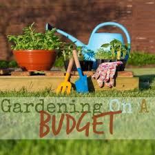 beginner gardening. 5 Beginner Gardener Mistakes To Avoid Gardening I